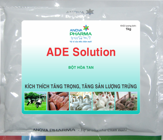 ADE SOLUTION